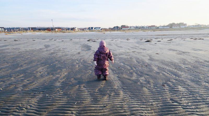 Tæt på naturen på stranden ved Bønnerup. Foto: Lilli Gruwier